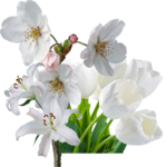 цветочные ноты aromacharm