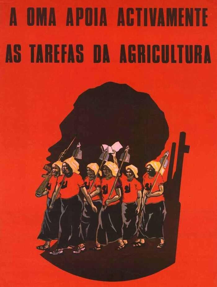 Союз ангольских женщин активно поддерживает задачи развития сельского хозяйства