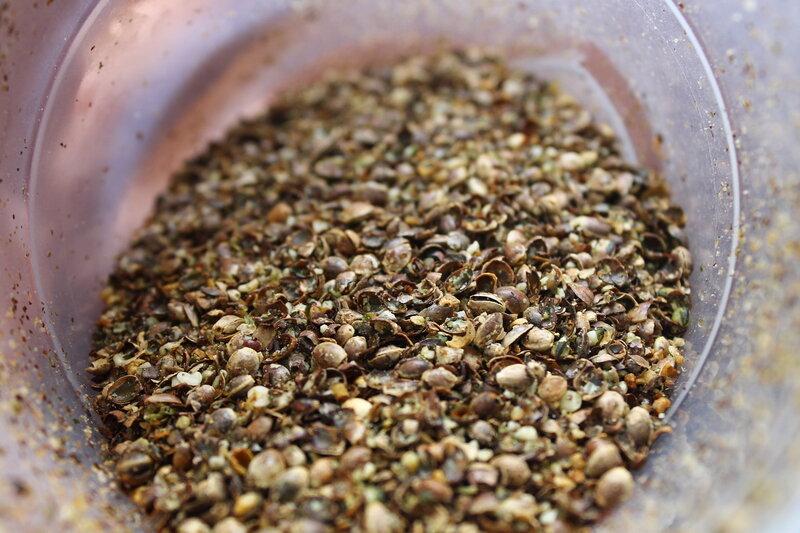 Как сварить семена конопли марихуана описание эффекта