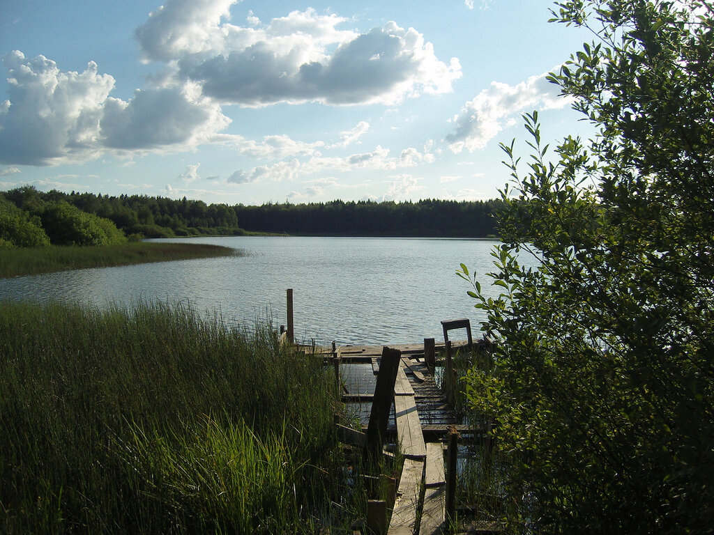 Сафоновский пруд. Привалка-загоралка
