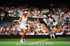 http://img-fotki.yandex.ru/get/6728/14186792.35/0_d9600_7de68b37_orig.jpg