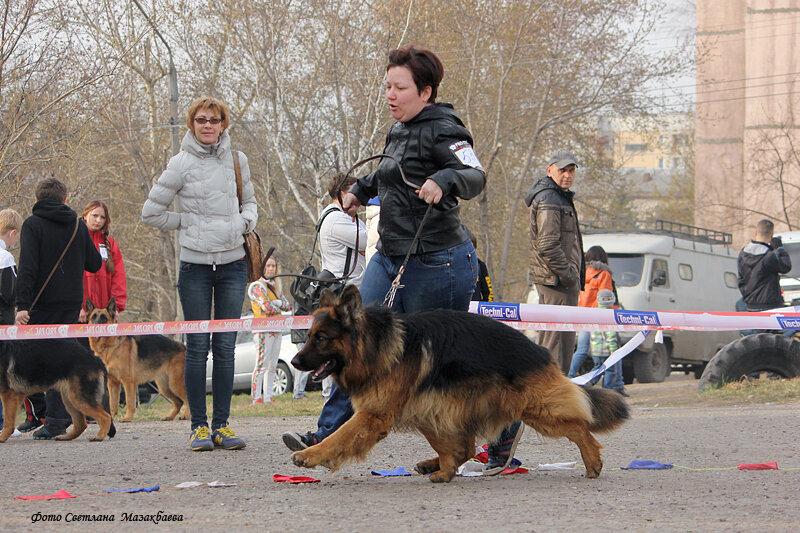 http://img-fotki.yandex.ru/get/6728/225487091.21/0_c7149_35522df1_XL.jpg
