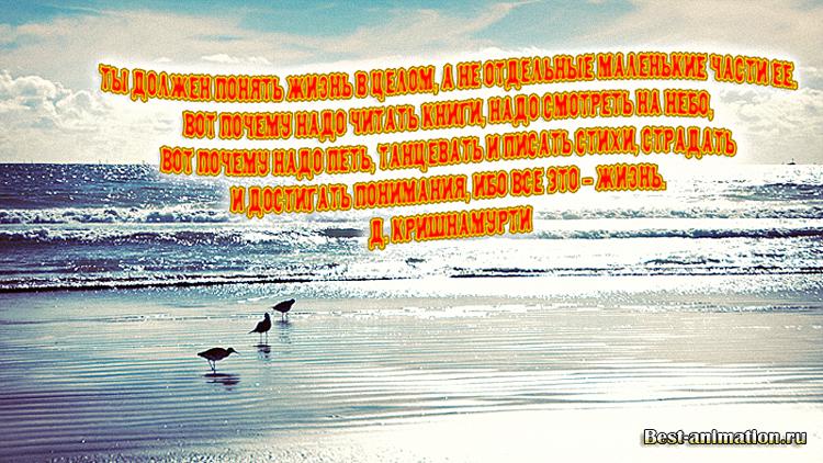 Цитаты великих людей - Что такое жизнь - Ты должен понять жизнь в целом...
