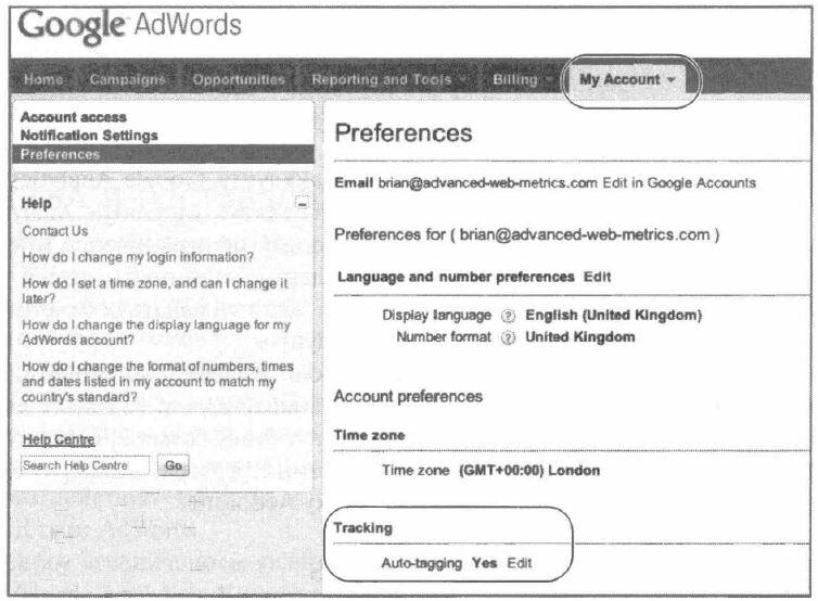 Рис. 6.10. Установка функции автопометки рекламных кампаний в аккаунте AdWord