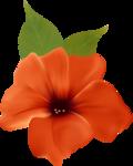 цветы-(276).png