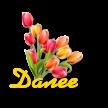 цветы - Самое интересное в блогах