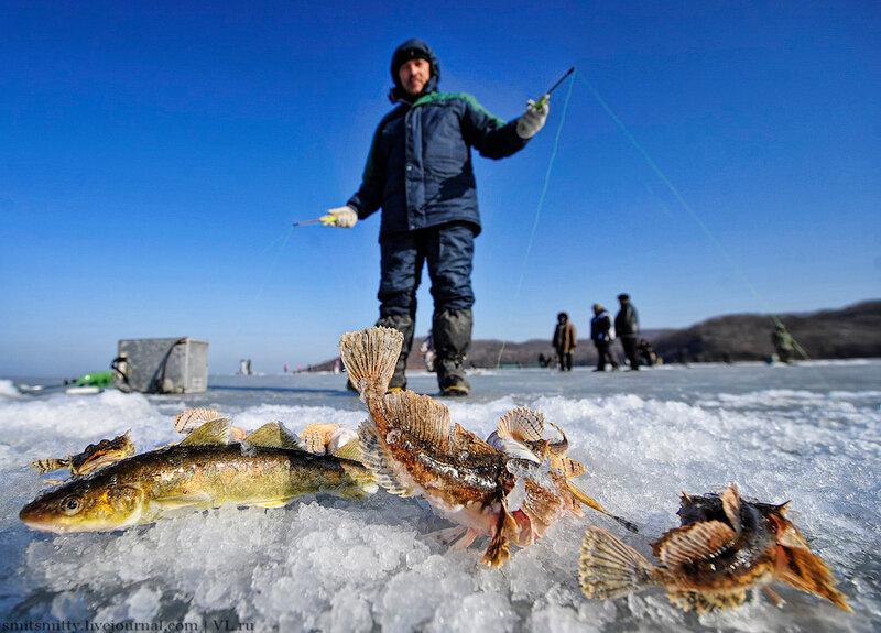 Рыбалка в декабре во владивостоке