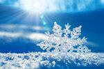 Snowflakes (4).jpg