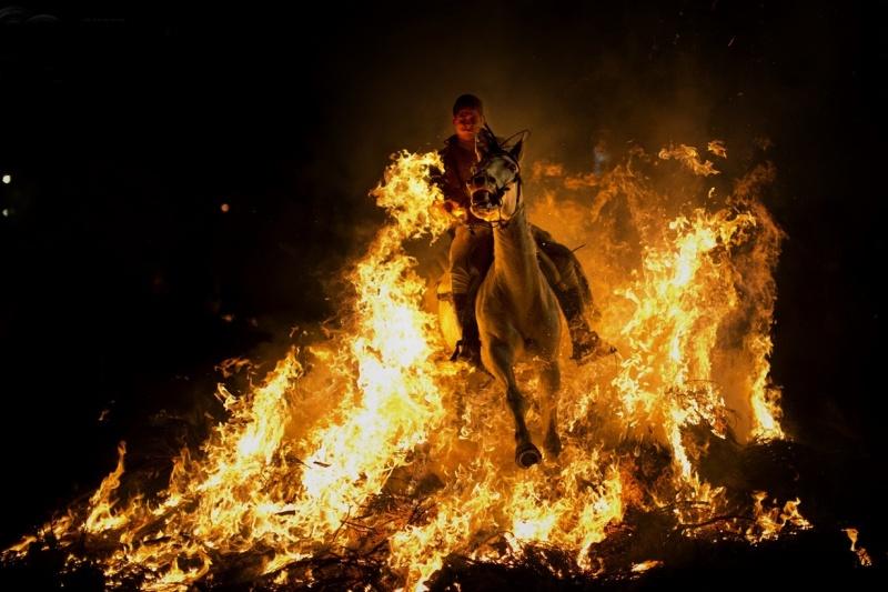 конь в огне