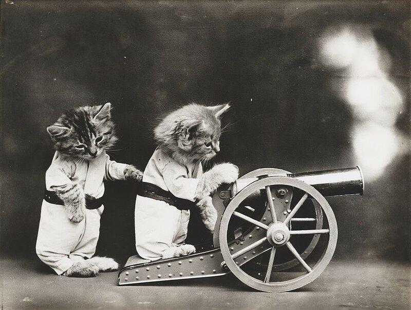 Гарри Уиттьер Фрис специализировался на постановочных фото для открыток.