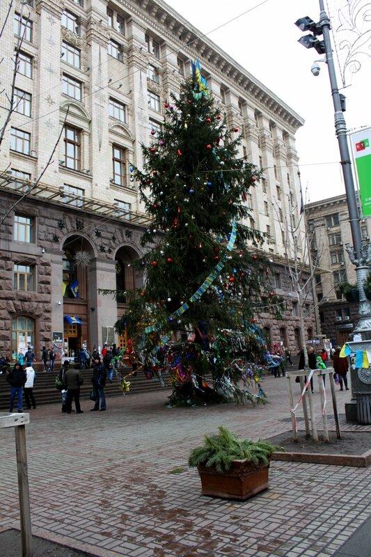 Новогодняя елка под мэрией Киева