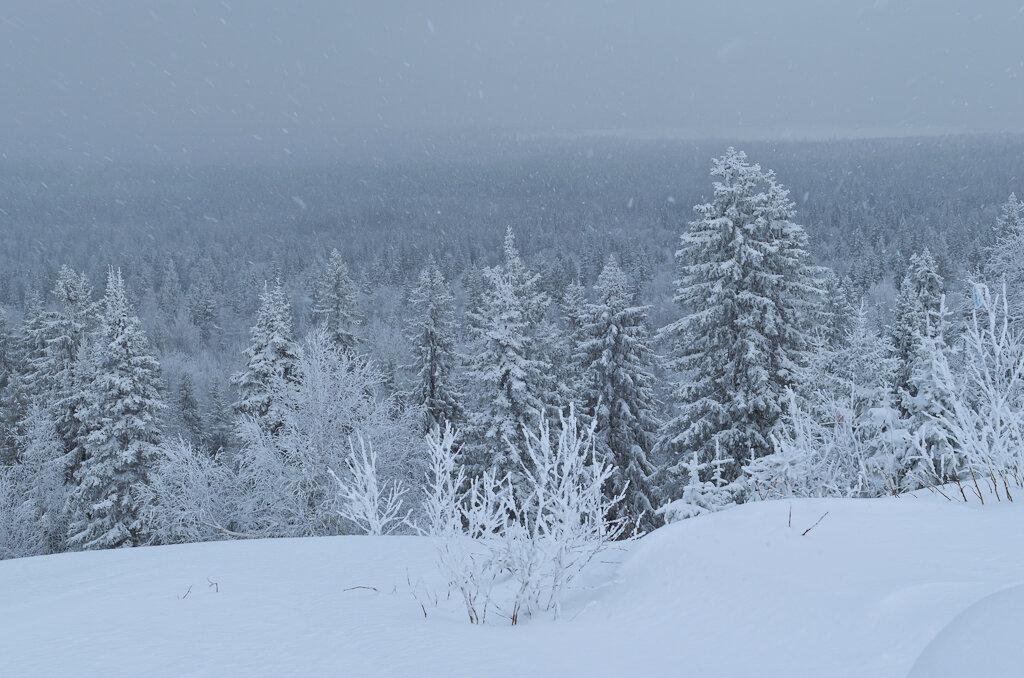 Фотография 9. Там за горизонтом, наверняка, уже нет поселений... Вид со смотровой площадки Белые камни в городе Гремячинск Пермского края.