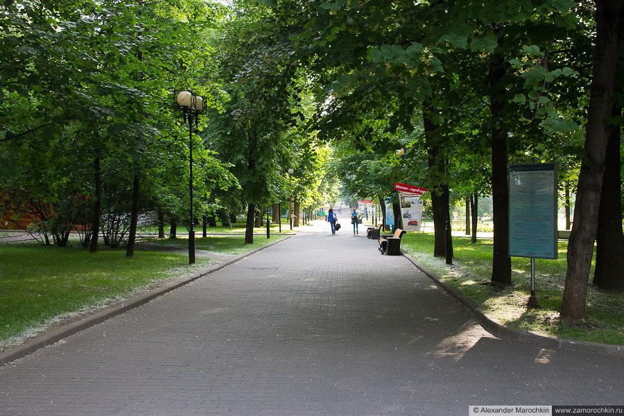Аллея в Екатерининском парке в Москве