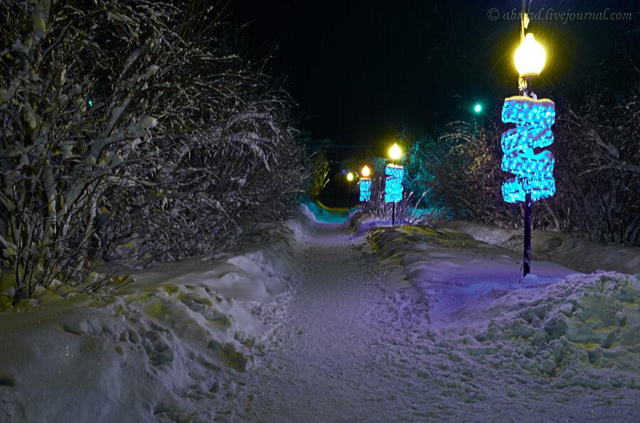 елка арка фото
