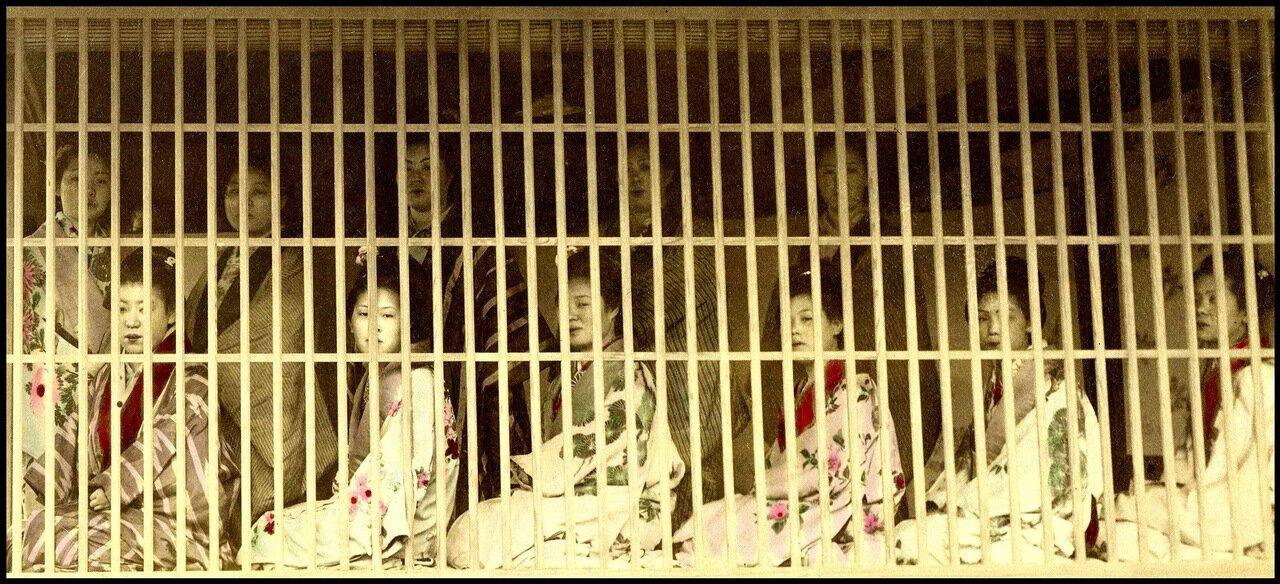 проститутки клетка