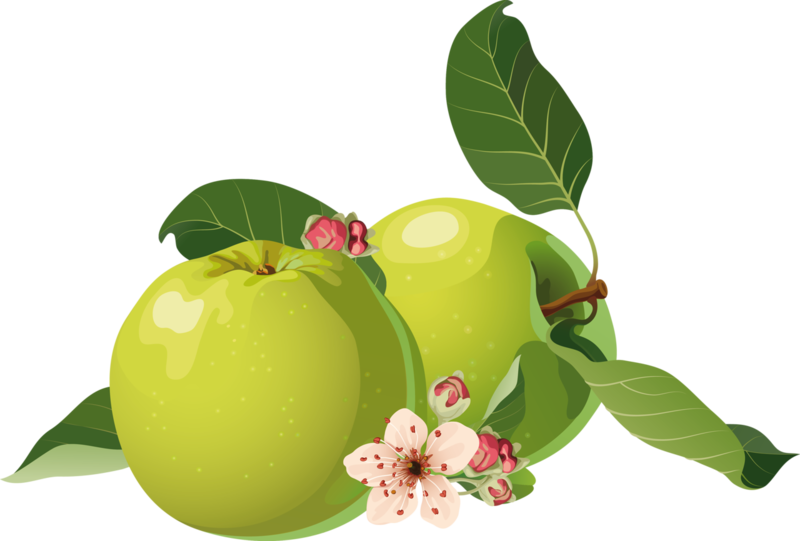 fruits (1).png