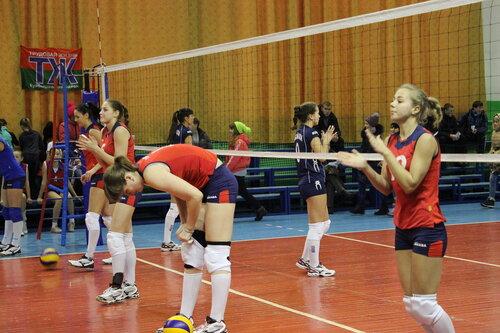 Чемпионат по волейболу высшая лига
