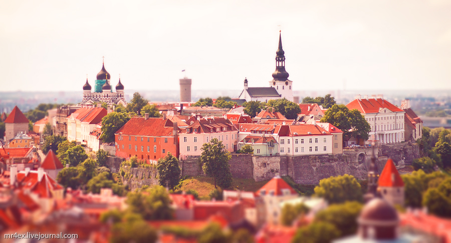 Эстония, Таллин, Tallinn, Estonia, tilt-shit, panorama Estonia, Вышгород, Toompea