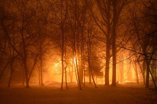 городской туман