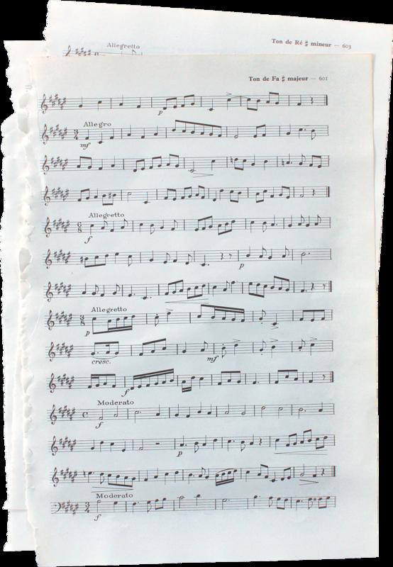 bee_concerto_el53.png