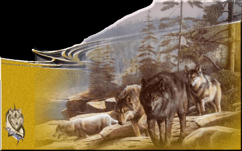 более волк уходит от погони картинки гораздо сильнее