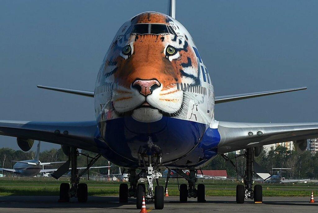 Картинка тигра и льва