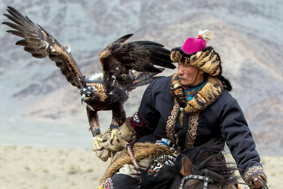 11. Это очень крупный и сильный орёл — размах крыльев 180—240 см. Окрас оперения взрослой птицы коле