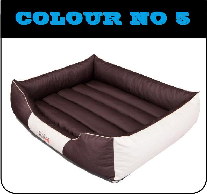 comfort5.jpg