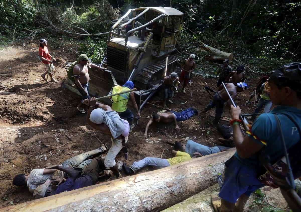 Окружение и захват главной базы незаконных рубщиков леса