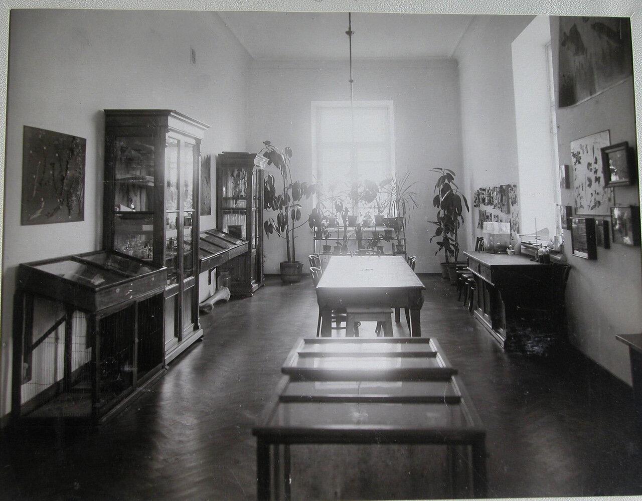 21. Витрины, стенды и шкафы с пособиями по ботанике в одном из кабинетов