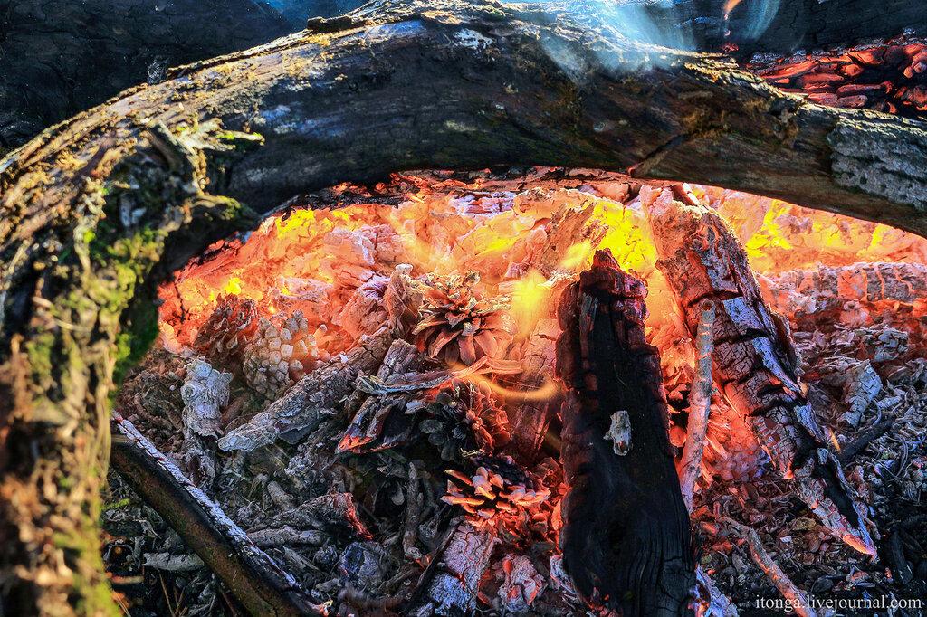 Осень 2014 - Осень, Лучшие фото, Лес, Закаты и восходы, Горы - chronical, siberia, russia, osinniki, kuzbass