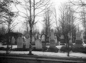 Аллея на кладбище.