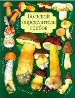 Аудиокнига Юдин А.В. Большой определитель грибов (2001) PDF pdf 20Мб