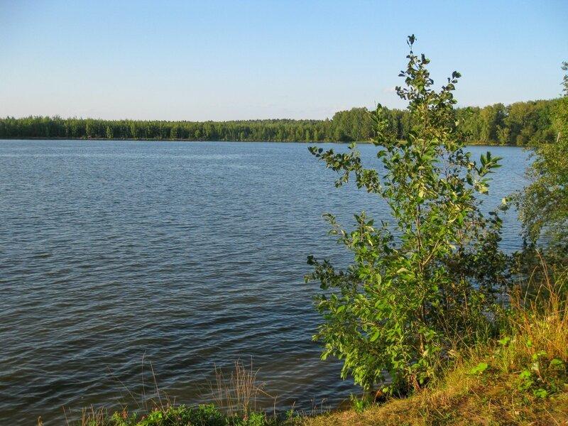 Берег Пяловского водохранилища