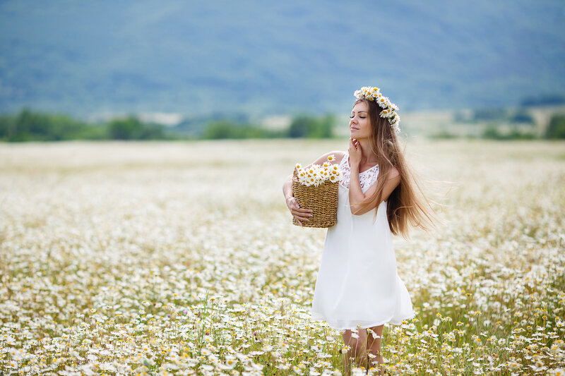 Сплету из полевых цветок венок