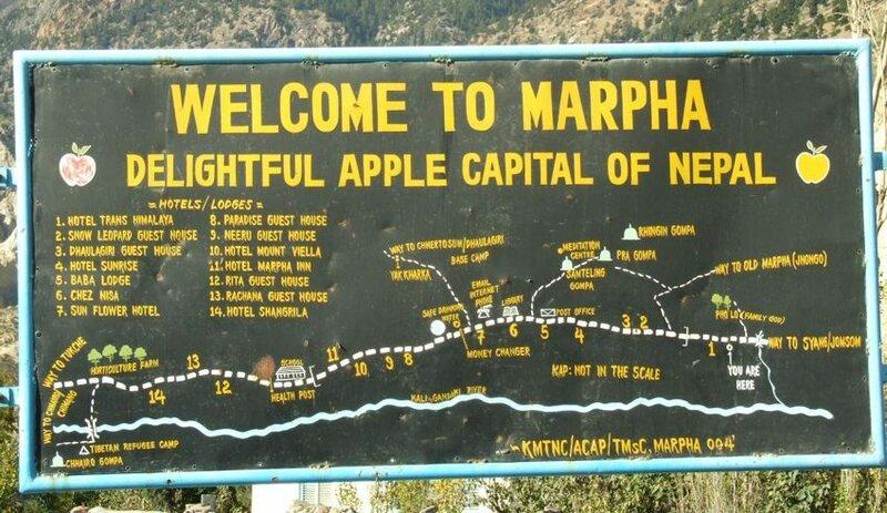 Добро пожаловать в Марфу