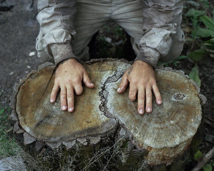 Руки отшельника