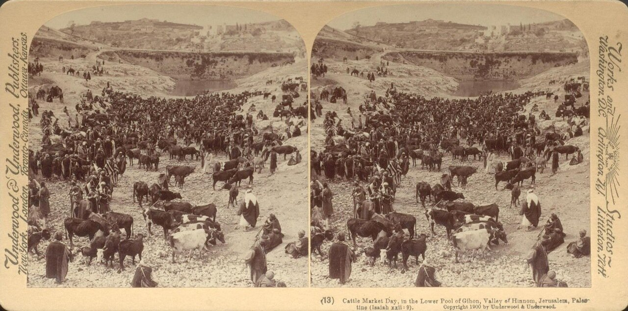 Скотный рынок в долине Енном. 1900