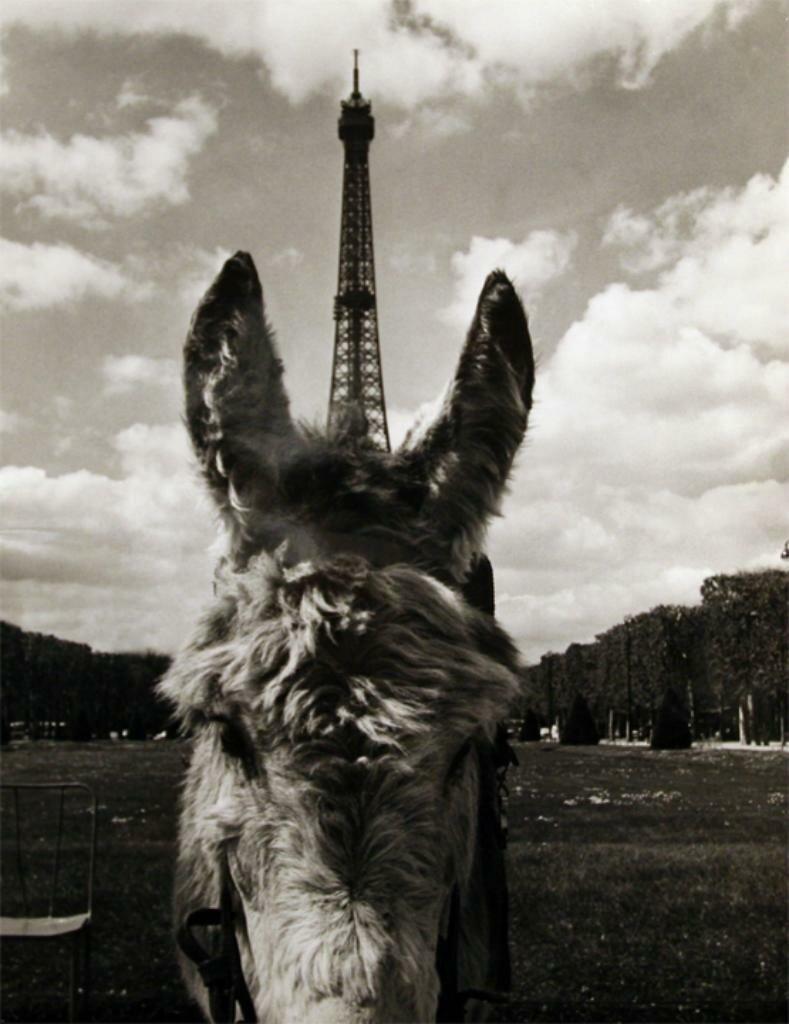 1969. Эйфелевая башня и пони