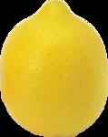 цитрусы (73).png
