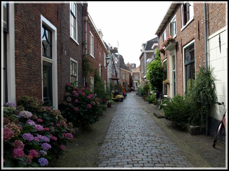 holland1 220.jpg