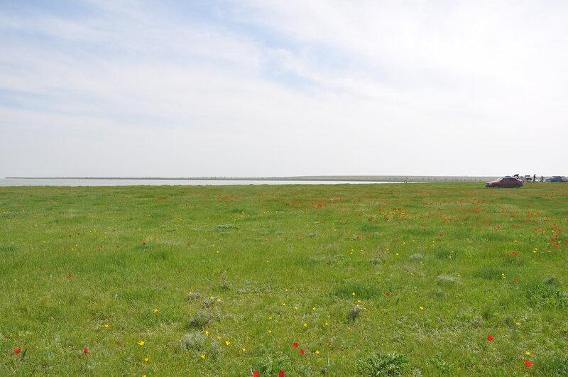 Маныч, Полуостров Пятисотка, Калмыкия