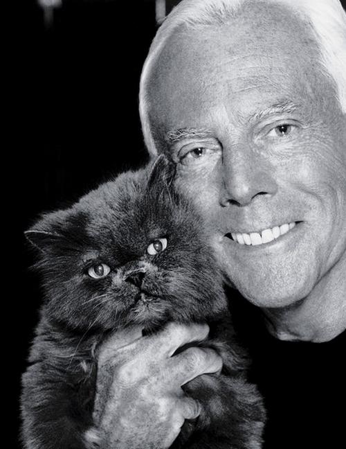 Джорджио Армани с кошкой