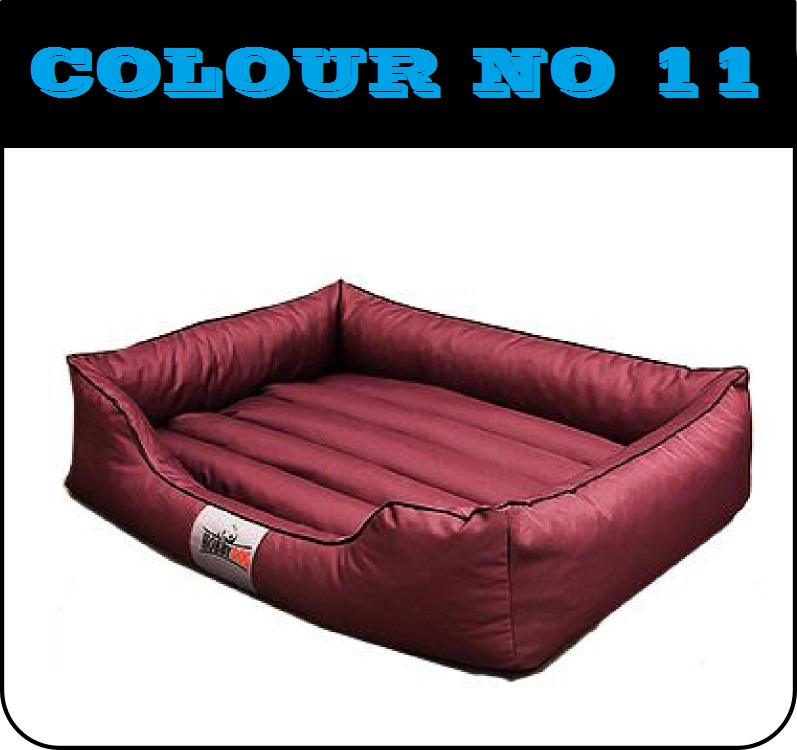 comfort11.jpg