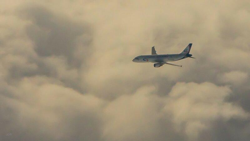 Уральские авиалинии - соседи по полету
