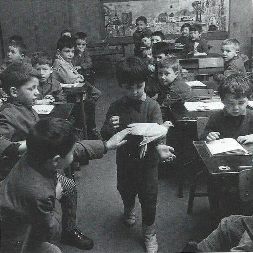 1964. Дети и голубь