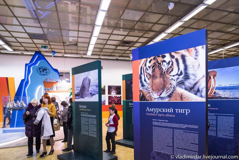 Фестиваль Русского географического общества 2014