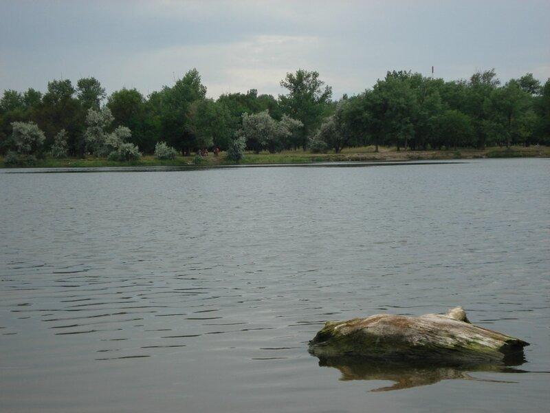 2008-07-06 17.45.30.jpg