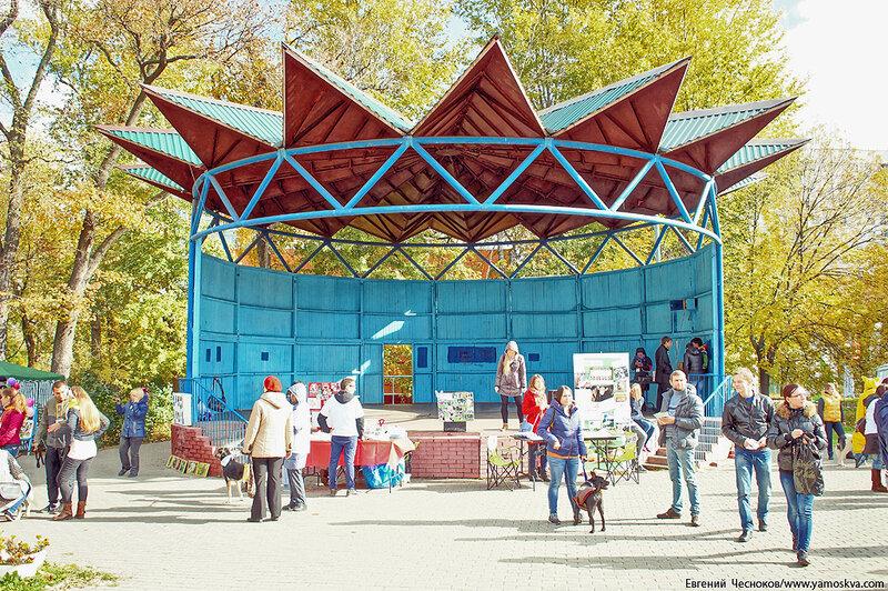 Осень. Фестивальный парк. 04.10.14.09..jpg