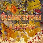 Осенние веточки, листочки